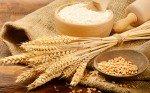 Gluten im Weizenkorn